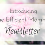 Introducing the Efficient Momma Newsletter!