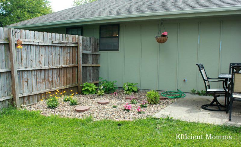 backyard finished 1