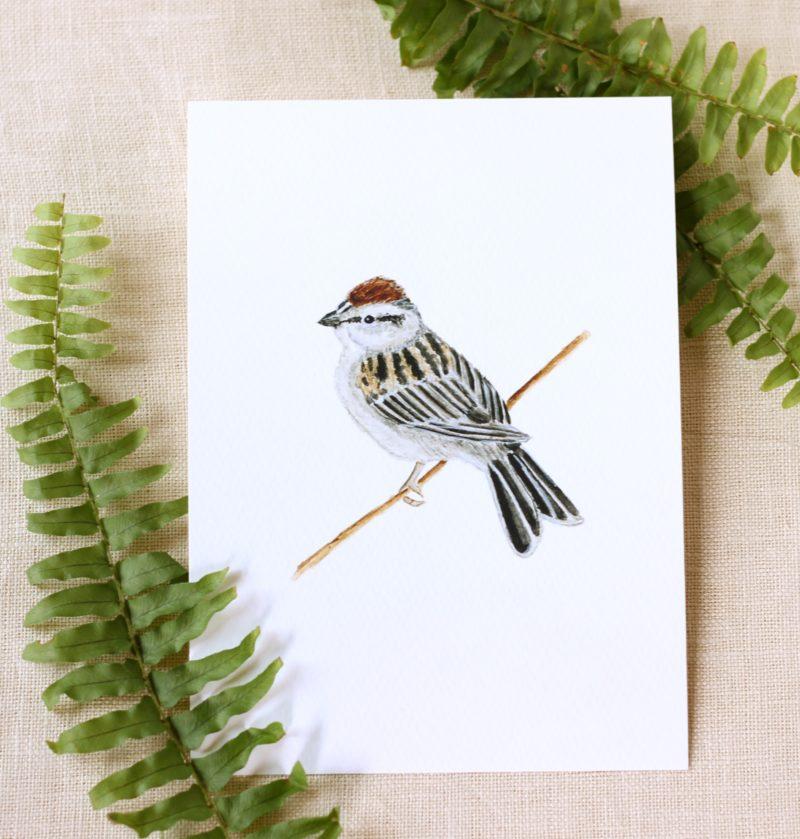 Pebble Creek Prints Bird Watercolor Print